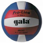 GALA Pro Line Mini libero lopta za odbojku, veličina 4