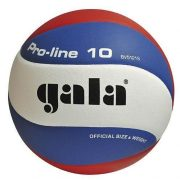 GALA Pro-Line BV-5121SH lopta za odbojku u mađarskim nacionalnim bojama – dio serije natjecateljskih lopti, glatka površina