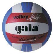 Gala Training Star lopta za odbojku