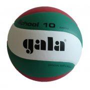 Gala School H lopta za odbojku u nacionalnim bojama s preporukom MOB i MRSZ novi model